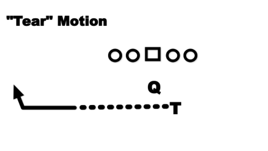 TMotion2